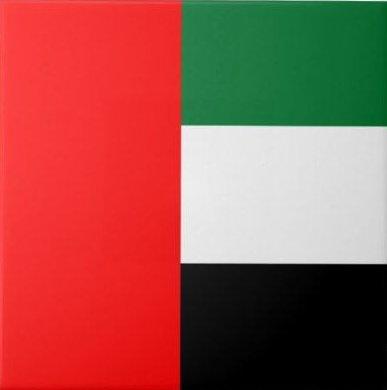 dubai_flag